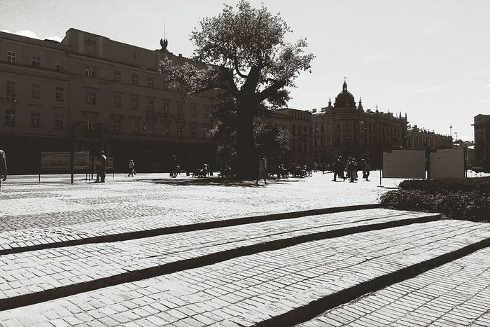 City Discover Your City My City Cityscapes CityWalk City View  Poland Lublin Lublin Poland Lubelskie