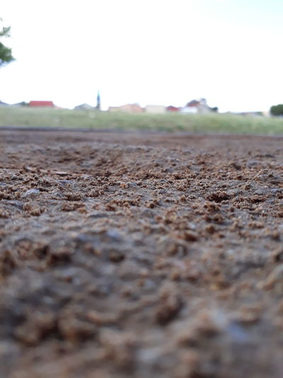 Selective Focus Day No People Outdoors Arid Climate Nature Sky Animal Themes Soil On The Ground SowetoSouthAfrica EyeEm Selects Sophisticated Smartphonephotography Smartphone Photos Soweto Johannesburg Grass Cloud - Sky Township After The Rain