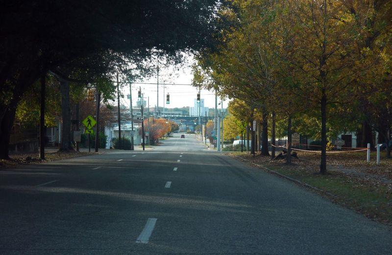 Tree City Water Road