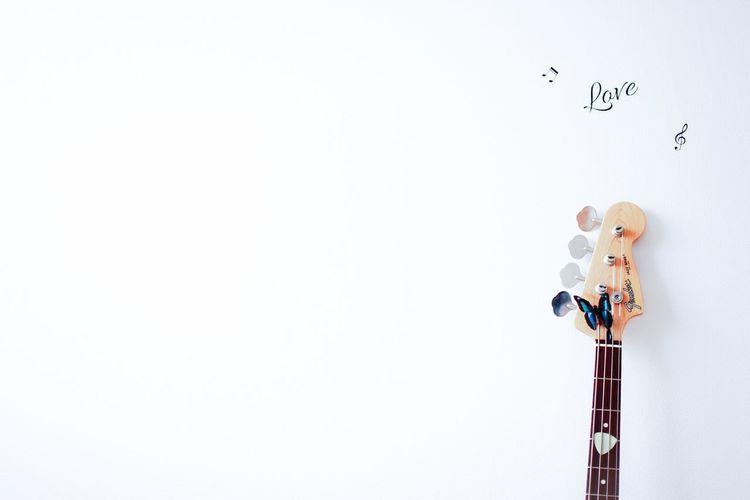 雨だし、家フォト… Bass Fender White EyeEm Gallery Enjoying Life