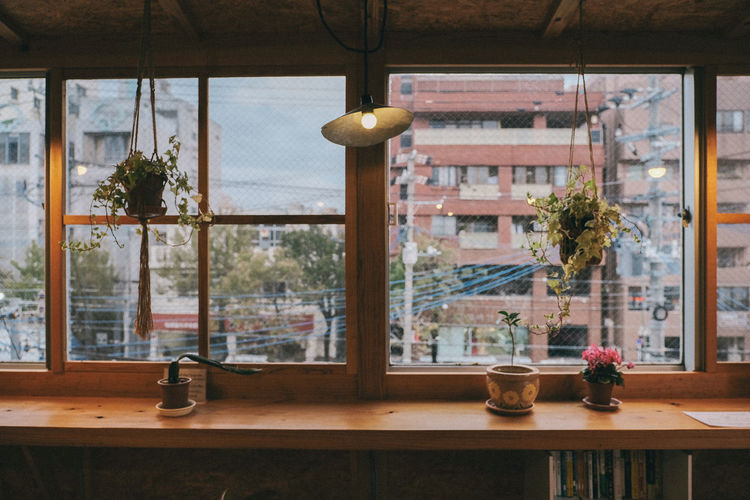 Cozy mood Japan Photography Japanese  Architecture Cold Temperature Day Indoors  No People Table Tree Window Wood - Material Wooden
