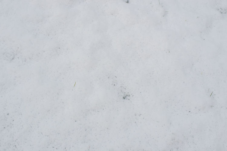 Snow surface as a background to the spring beginning Snowy Background Beginning Of Spring Spring Winter Garden Snow Frozen Winter Beginning Winter Mood Frost Snowed White Damp Smooth Season  Wet December November Thaw Melt