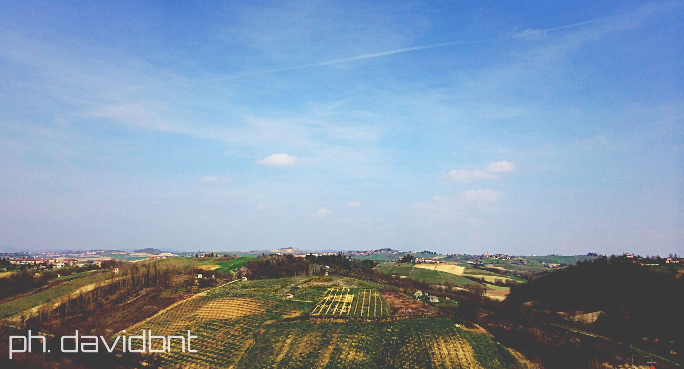 sky, agriculture, landscape, rural scene, field, high angle view, blue, tree, built structure, building exterior, cloud - sky, architecture, nature, growth, outdoors, tranquility, farm, beauty in nature, day, no people