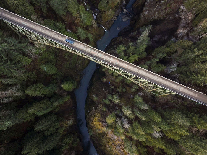 High angle view of bridge over forest