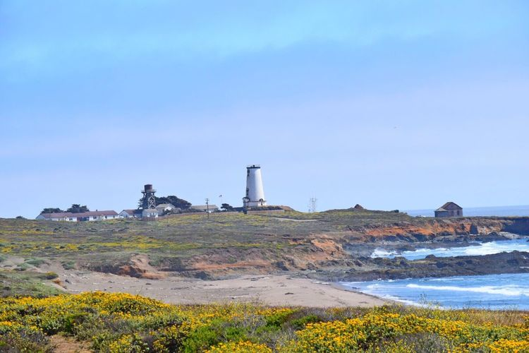 Lighthouse Piedras Blancas Taking A Drive Beachscape The Great Outdoors