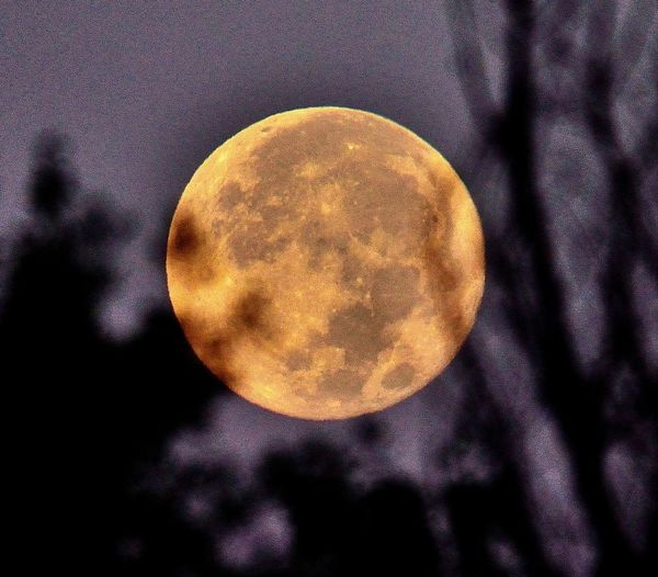 Lluna d'agost
