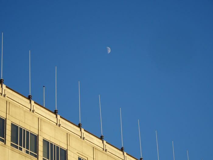 half moon over building with blue sky background Architecture Astronomy Astronomy Photography Beauty In Nature Blue Blue Sky Building Building Exterior Built Structure Clear Sky Day Daymoon Dcfocused Half Moon Judiciarysquare Looking Up Low Angle View Moon Moon Moon In The Day Nature No People Outdoors Sky Washington, D. C. Minimalist Architecture Minimalist Architecture
