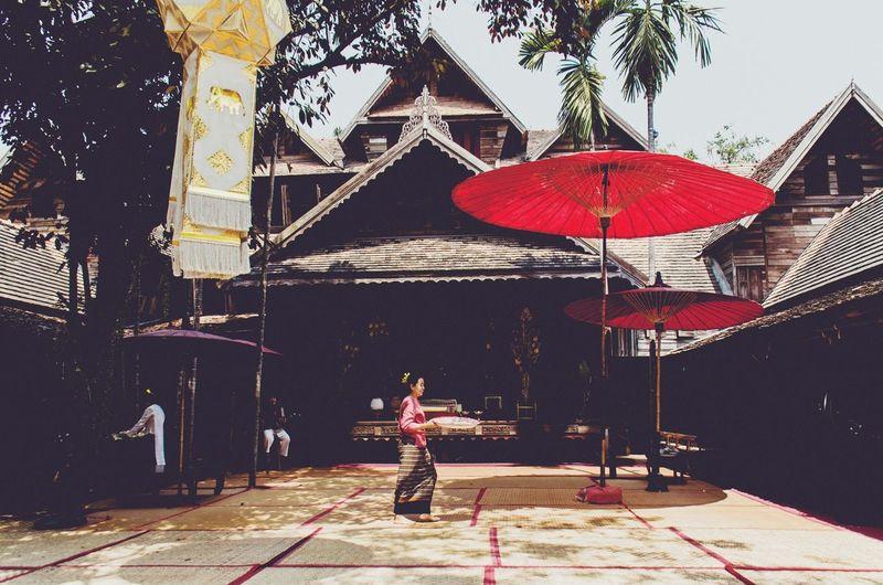 Monfai Chiangmai Cnx ม่อนฝ้าย เชียงใหม่ ล้านนา Lanna