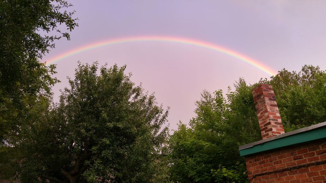 Rainbow Double Rainbow Tree Spectrum Weather No People Multi Colored Outdoors Beauty In Nature Day Luck Nature Refraction Sky Rain Sun