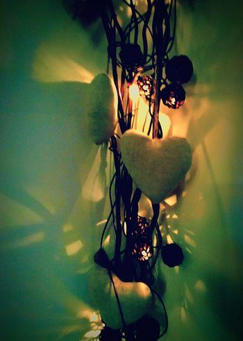 Messedupjournal Love Lights Reflection Twig