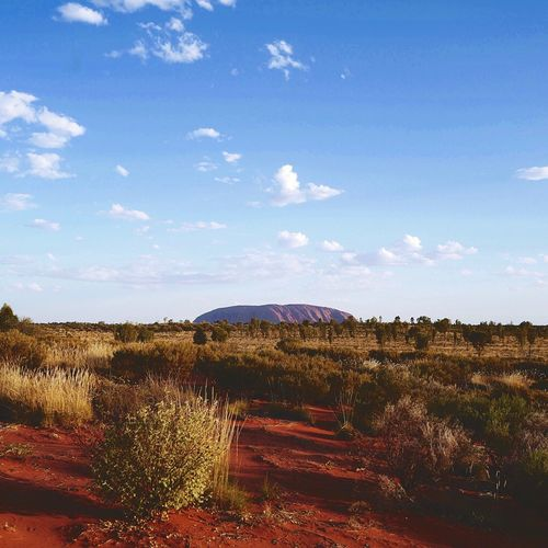 Uluru Ayers Rock Uluru Desert Sky Cloud - Sky Nature Plant Environment Landscape Day Tranquil Scene