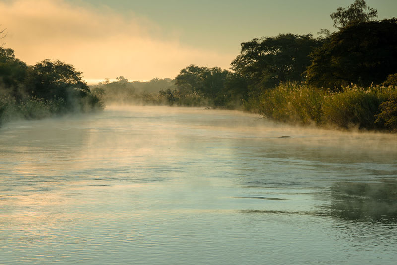 Botswana Africa Beauty In Nature Fog Reflection Scenics - Nature Tranquility Water Waterfront