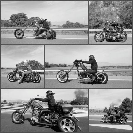 Born to be wild. Motorcycle Transportation RISK Mode Of Transport Adults Only People Adventure Sports Track Road Motorsport Land Vehicle Motorcycles Motorbike Born To Be Wild Harley Davidson Photooftheday EyeEm Best Shots TheWeekOnEyeEM EyeEm Diversity Lifestyles Best EyeEm Shot Real People BYOPaper!