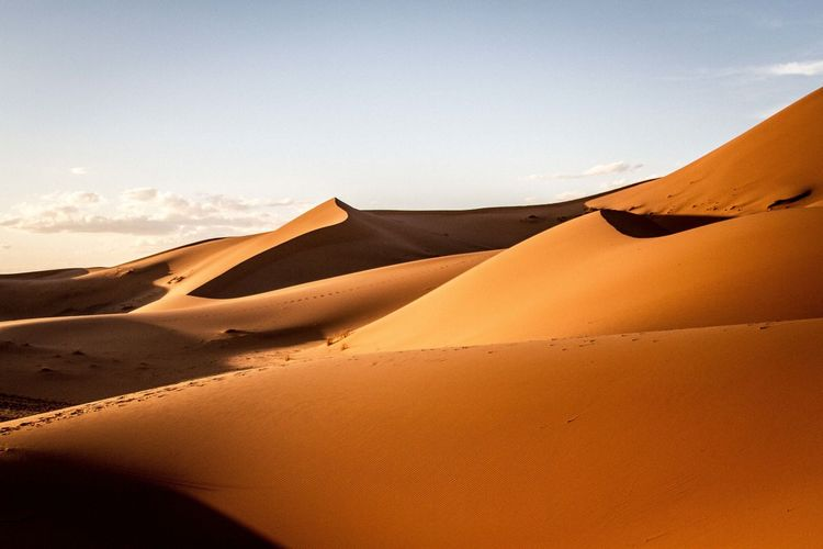 Arid Arid Climate Arid Landscape Barren Clear Sky Copy Space Desert Extreme Terrain FootPrint Geology Horizon Over Land Landscape Majestic Merzouga Morocco Natural Pattern Physical Geography Remote Sahara Sand Sand Dune