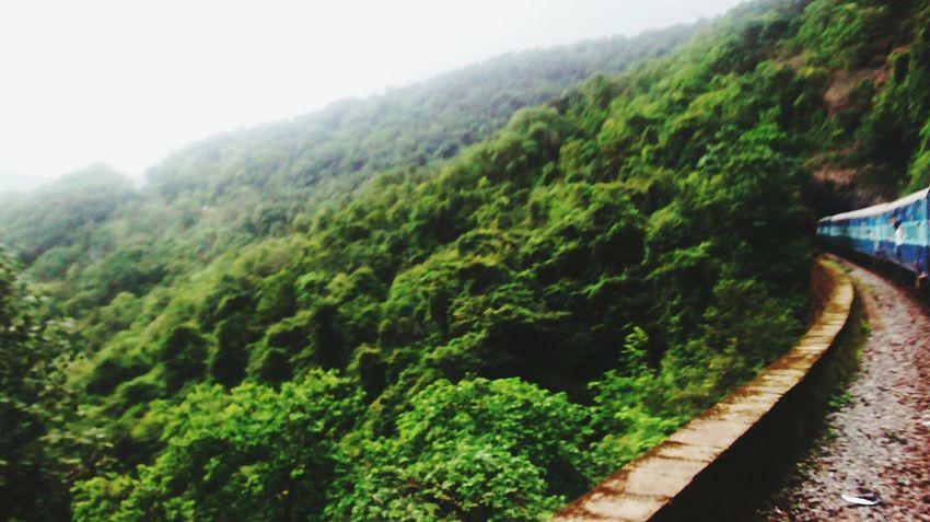 Greenery Westernghats Train Tracks TunnelHill Goa India Fun Places