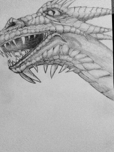 Saturday evening doodle Drawing Dragon Sketching Pencil Drawing