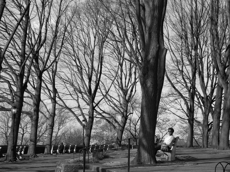 A woman at Fort Tyron Park Real People Outdoors