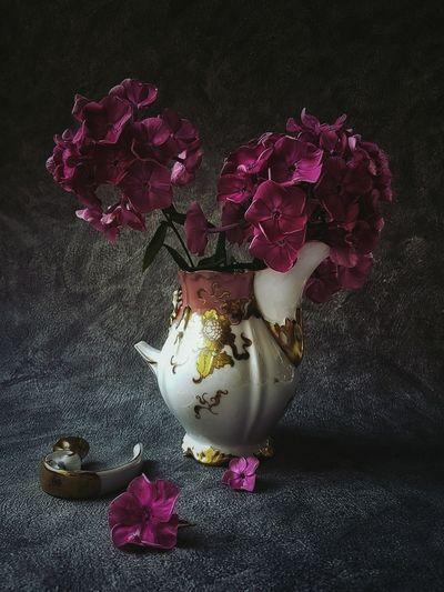 Studio shot of broken flower vase