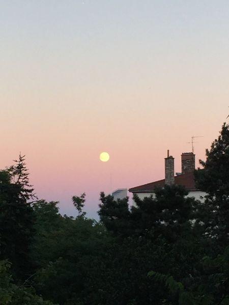 Ciel Lune Arbre Cheminée Lyon Lyon France Croix Rousse