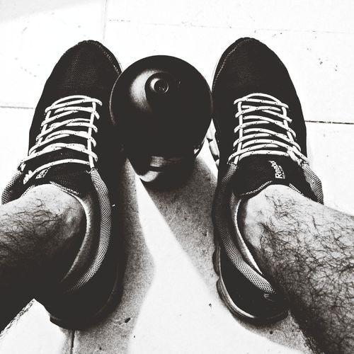 el mejor vitalizador gym