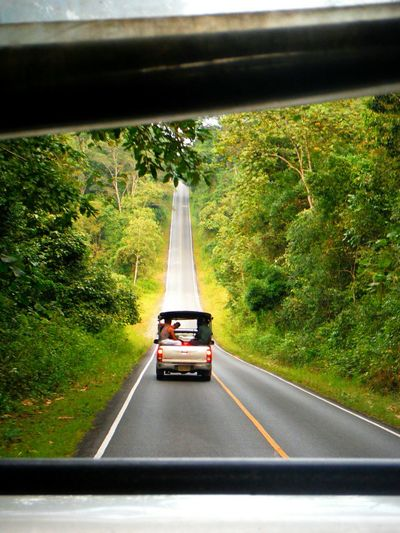 Lead us home Khaoyainationalpark Thailand Leading The Way Followbehind Looking Through The Window Leading Lines Long Road Long Road Home Following Leadinglines Jungle Going Home In The Jungle Journey Home FOLLOW THE LEADER PerspectiveStraight Ahead Khaoyai Khao Yai On The Way Thailandtravel EyeEm Thailand Fujifilm Finepix Xp60