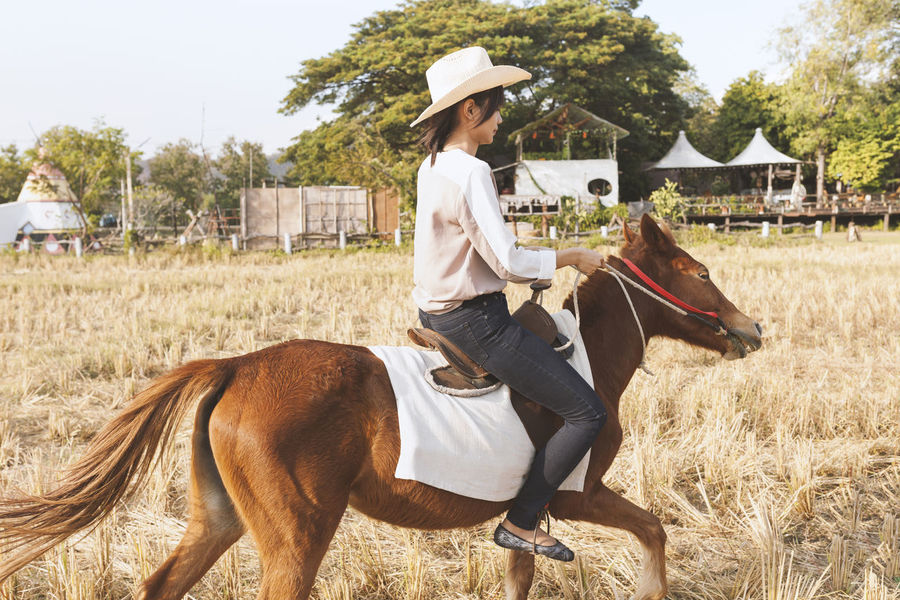 Beautiful young woman is smiling riding a horse on the field with relax time . Sideways to the camera. Freedom, joy, movement Casual Clothing Day Field Full Length Grass Leisure Activity Lifestyles Outdoors Person Young Adult Young Women