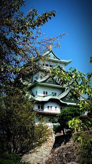 名古屋城 Japanese Castle Nagoya-jo Castle