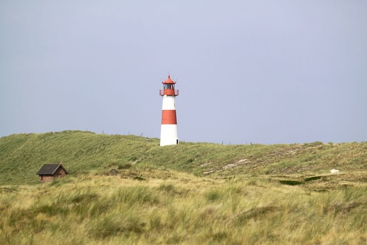 lighthouse in the dunes Architecture Built Structure Clear Sky Day Direction Dune Grass Landscape Lighthouse Nature No People Northsea Outdoors Protection Safety Security Sky Summer Sylt Tourism