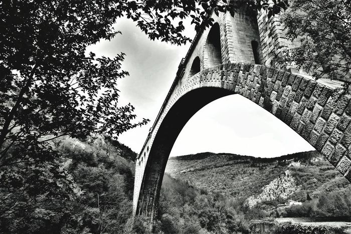 Solkan's bridge Landscape Nikon Full Frame D610 Monochrome Blackandwhite Solkan Bridge Solkan Slovenia Slovenija No Person Tree Close-up Arch Archway Historic Building Colonnade Architectural Column Column Historic Arch Bridge Building