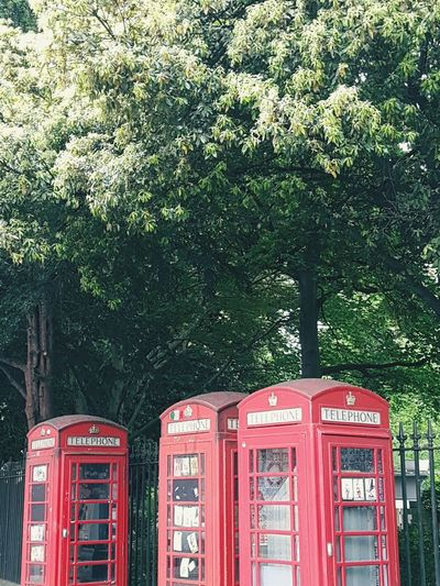 Phone booths and lush trees Phone Phone Booth Telecommunications Telee Payphone Tree Trees Lush Travel Writing London LONDON❤ London lifestyle London_only Londonlife London Streets Pay Phone Tree Telephone Booth Red Communication Close-up