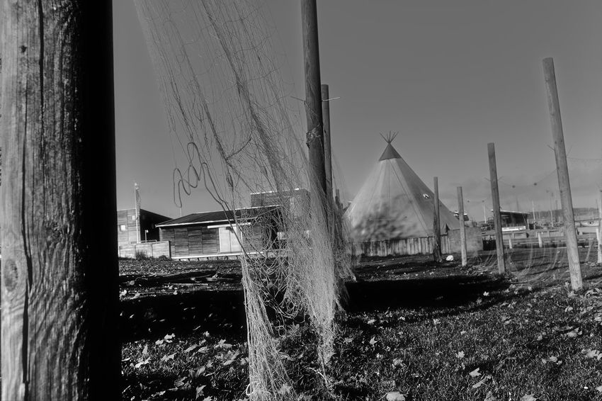 fishing nets Black & White Black And White Blackandwhite Day Drying Fishing Net Drying Net Drying Nets Fishing Net Fishing Nets Nautical Vessel Net Nets Nets Camp Nets Field No People Outdoors Sky Spraying Tree Water