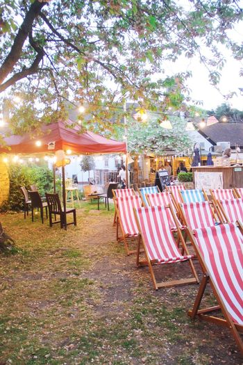 Grantchester Grantchester Meadows Cambridgeshire Outdoors Outdoor Movie Cinema Outdoor Movie Theater Beach Chairs Striped Chairs British Springtime England United Kingdom