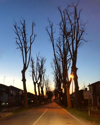 Street amidst silhouette trees and buildings against sky at dusk