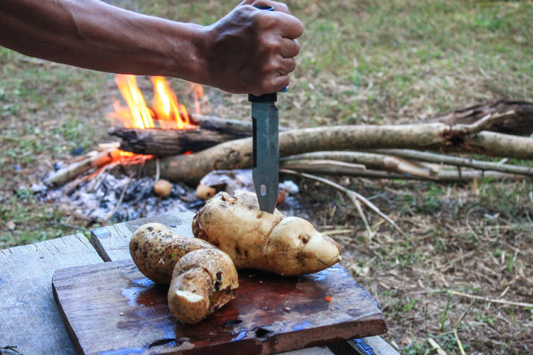 Cropped hand of man holding knife in potato at campsite