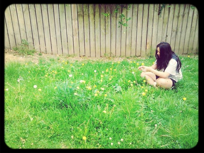 Little sister making daisy chains. Summertime Natures Beauty... Daisy Chains  Beautiful