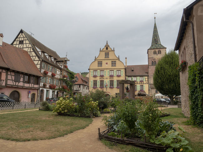 Turckheim Garden Architecture Built Structure Building Exterior Building Religion Place Of Worship Sky Spirituality Tree Plant Nature Belief City Day Cloud - Sky No People Outdoors Spire  Turckheim Medieval MedievalTown Alsace