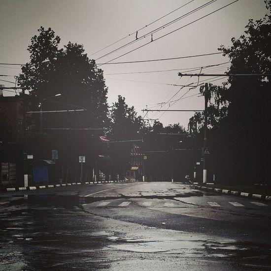 Podolsk Road Wire City trees