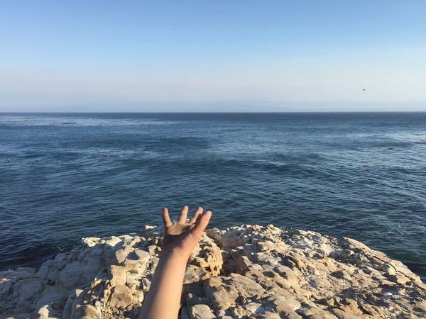 Hand Horizon Over Water Rocky Sea Water Personal Perspective Clear Sky Tranquility Child's Hand Part Of Scenics Seascape Wilder Ranch State Park Santa Cruz California Accidental Shot My Favorite Place Shot On IPhone