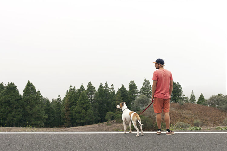 Rear view of a dog standing on road