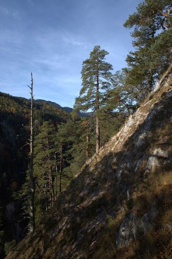 My autumn hike