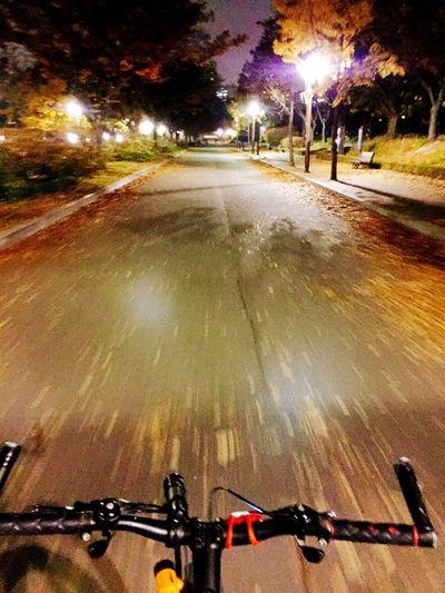🍁 Park Nightphotography Fall 🍁🍂🍁Fall Bicycling Boramae Park