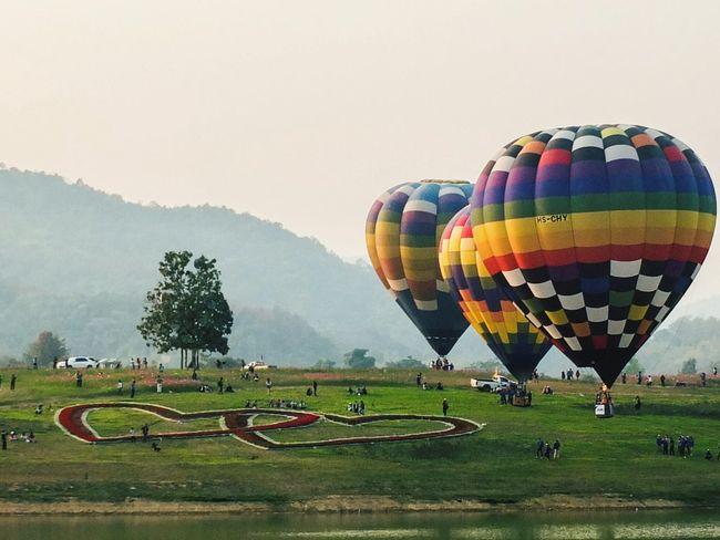 Balloons Festival Balloons Balloons🎈 Balloonfiesta  Festival Enjoying The Sun Thailand Chiangrai,Thailand Coloroftheday A Day In Thailand Colorful