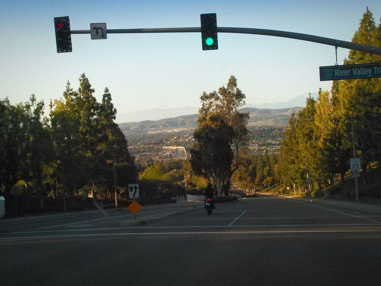 Going to a friend's for dinner. Late Afternoon Light Golden Hour Enjoying Life No Traffic TreePorn From A Moving Vehicle Hills Street Photography Landscape Suburbia