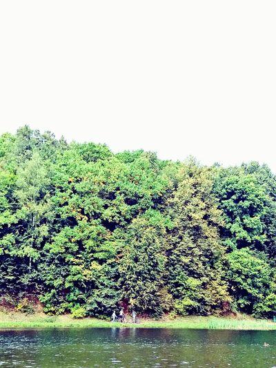 Forestwalk Россия осеньвроссии щелковскийхутор городскойпарк нижний новгород Beauty In Nature прогулкинасвежемвоздухе семья озеро Nizhny Novgorod Colors Of Autumn