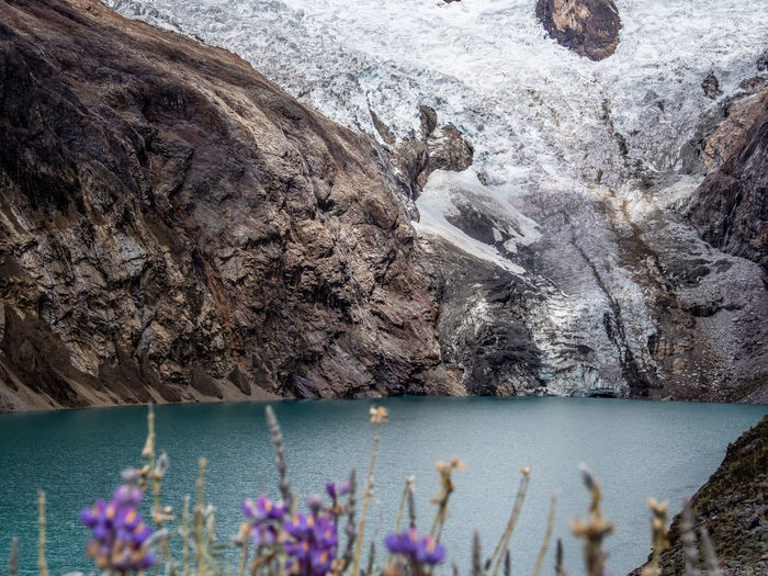 Water Rock Nature No People Rock - Object Day Plant Solid Beauty In Nature Flower Rock Formation Outdoors Mountain Flowering Plant Lake Tranquility Non-urban Scene Environment Purple