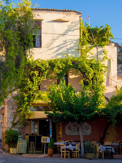 Traditional Greek restaurant in Chania, Crete Old Harbour, in afternoon sun Crete Greece Restaurant Scene Afternoon Sun Building Exterior No People Street Sunlight Tree
