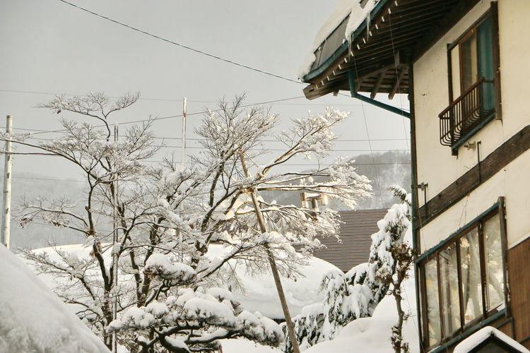 Winter In Japan First Eyeem Photo