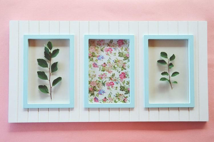Frame Pictures Pictureframe Flowers Leaves Leaves🌿 Nature Pastel Colorful Beautiful Photography Laying Down High Angle View