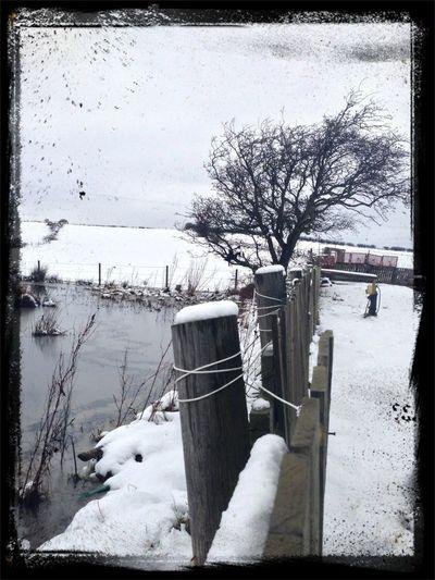 Snow EyeEm Nature Lover