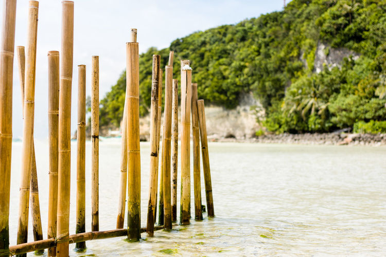 A bamboo barrier fence in a white sand beach with tree covered cliff back ground. Bamboo Barrier Boracay Day Empty Fence Foreground Headland LINE Nature No People Nobody Outdoors Paradise Philippines Poles Posts Sky Tranquil Scene Tranquility Tree Upright Vertical Water White Sand